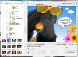 Phần mềm chèn chữ vào ảnh trên máy tính PhotoScape